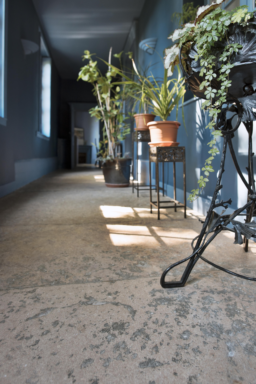 Carrelage en pierre - Hall d'entrée - Pierre naturelle beige Cèdre Gray
